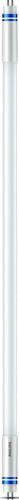 Philips Lighting LED Leuchtstofflampe HF 1200mm HE 16,5W MASLEDtube#74331700