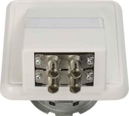 Telegärtner Anschlussdose OAD/S m.2xST-Duplex aws 100022455