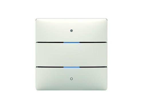 Theben KNX-Tastsensor 2Tasten,2Status-LEDs iON 102 KNX