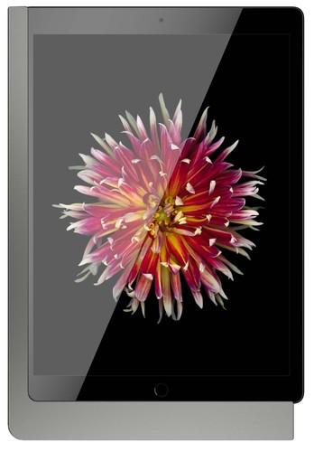 """Viveroo iPad Wandhalterung m.Ladefunktion anthrazit freeDarkSteel12,9"""""""