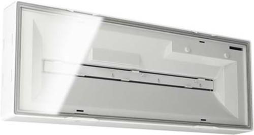 ESYLUX LED-Notleuchte weiß 8h, f.AP-/Deckenmon. ELX EL LED 8h IR SM