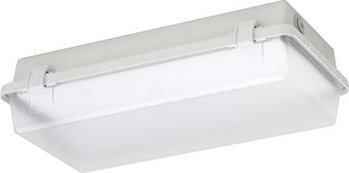 Schuch Licht LED-Feuchtraum-Notleuchte IP65, SK I 164KL L05G2 ZB