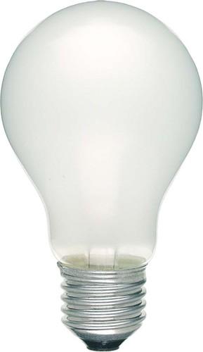 Scharnberger+Hasenbein Allgebrauchslampe B60x105 E27 230V 100W matt 40759