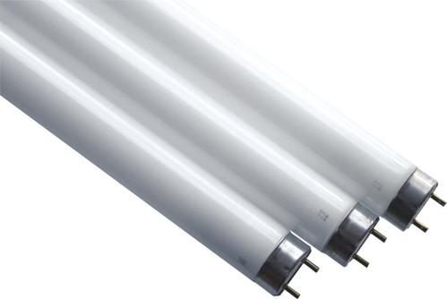Scharnberger+Hasenbein Entkeimungslampe 26x437mm T8 G13 25W UV-C 44612