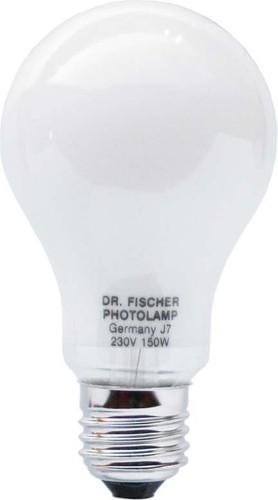 Scharnberger+Hasenbein Fotolampe 65x118mm E27 230V 150W 65065