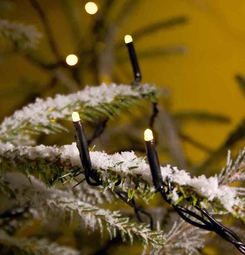 Gnosjö Konstsmide WB Micro-LED-Lichterkette 200-lp. 3613-110