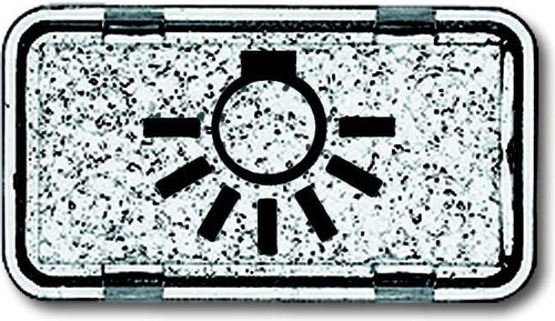 Busch-Jaeger Tastersymbol Licht 2622 LI-101