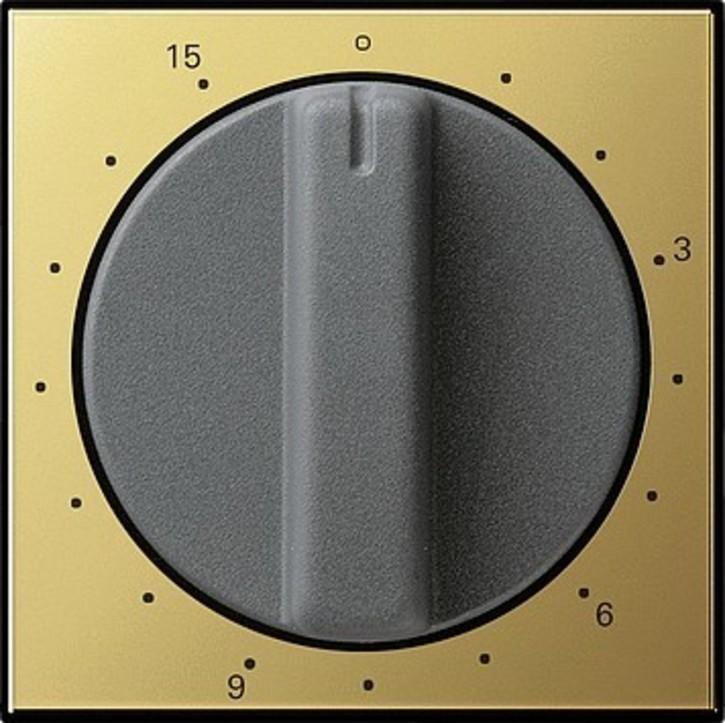 Gira Abdeckung Zeitschalter ms 15min.System 55 0640604