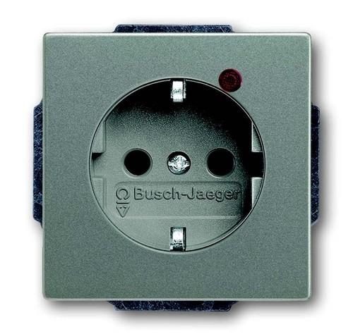 Busch-Jaeger Steckdosen-Einsatz meteor/grm. 2310EUGL/VA-803-11