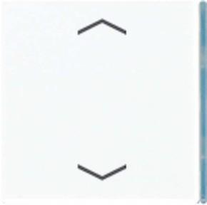 Jung Taste 4-fach alpinweiß mit Symbolen A 404 TSAP WW 23