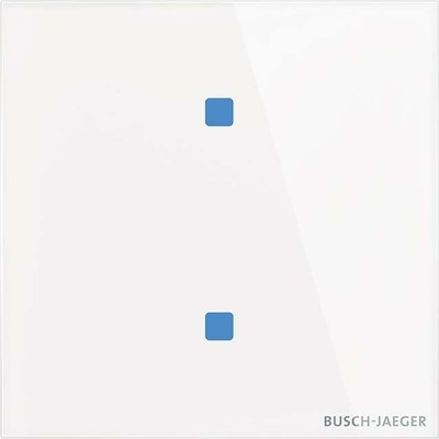 Busch-Jaeger Touch-Bedienelement 2-fach TB/U2.4.11-CG