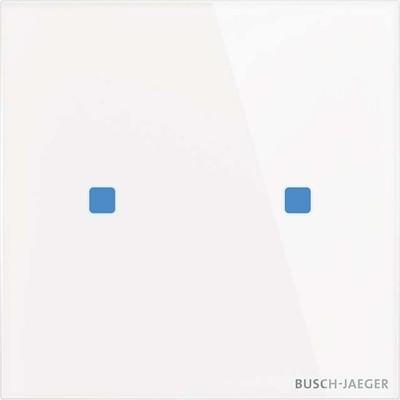 Busch-Jaeger Touch-Bedienelement 2-fach TB/U2.5.11-CG