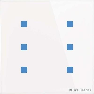 Busch-Jaeger Touch-Bedienelement 6-fach TB/U6.5.11-CG