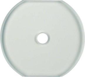 Berker Glasplatte f.Drehschalter/tast. 1095
