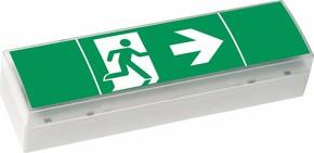 Ceag Notlichtsysteme LED-Einzelbatterie-Leuchte m.Prüftaster SV EURO4 LED 3h(SET)