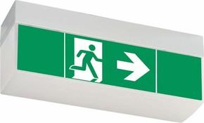 Ceag Notlichtsysteme LED-Einzelbatterie-Leuchte m.Prüftaster SV EURO4L LED 3h SET