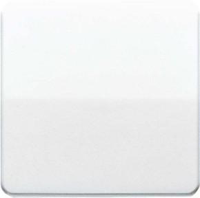 Jung Wippe lichtgrau für Taster CD 590 LG