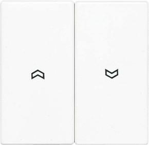 Jung Wippe Symbole alpinweiß für Taster LS 995 P WW