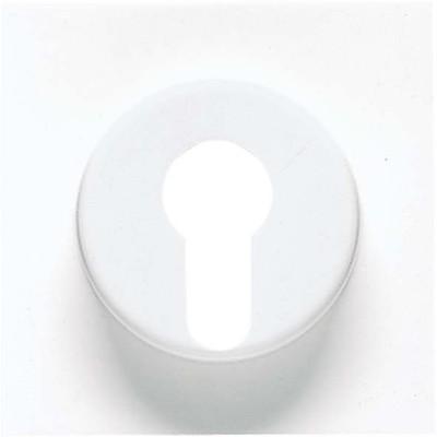 Jung Abdeckung alpinweiß für Schlüsselschalt. LS 928 WW
