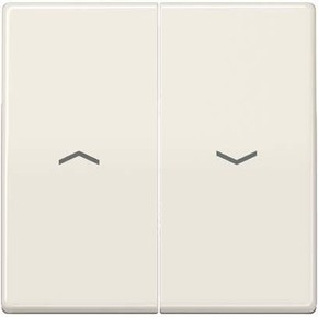 Jung Wippe Symbole weiß für Taster AS 591-5 P