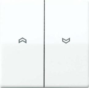 Jung Wippe Symbole alpinweiß für Taster AS 591-5 P WW