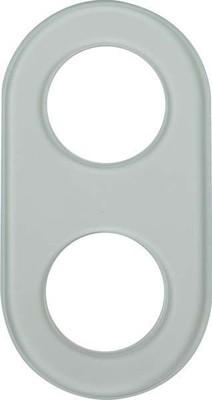 Berker Glasplatte 2-fach 1102