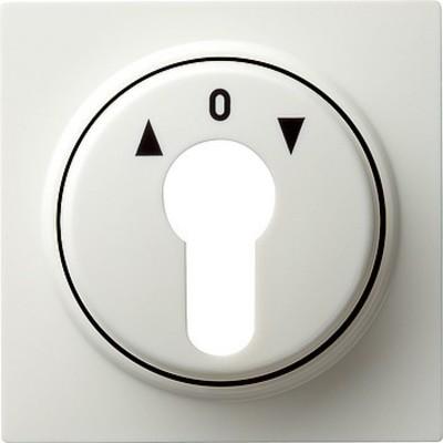 Gira Zentralpl. Schlüssel. reinweiß S-Color 066440