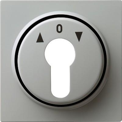 Gira Zentralpl. Schlüssel. gr S-Color 066442
