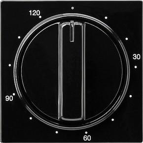 Gira Zentralplatte Zeitsch. schwarz 120min., S-Color 064247