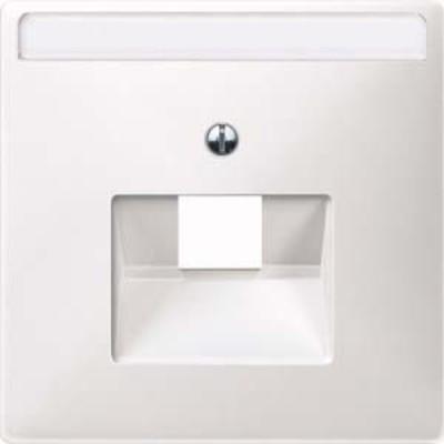 Merten Zentralplatte polarweiß UAE 1-fach Schriftfeld 291819