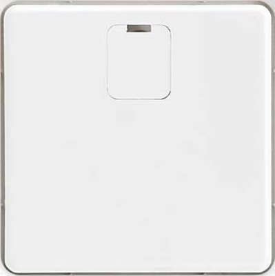 Elso Zentralplatte rw f. Trennrelaiseins. 207084