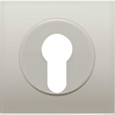 Jung Abdeckung edelstahl für Schlüsselschalt. ES 2928