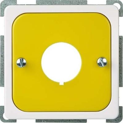 Elso Zentralplatte ge/rw für Befehlsgeräte 203067