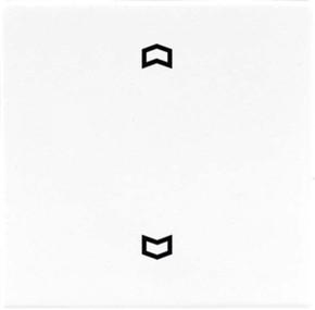 Jung Wippe Symbole alpinweiß für Taster LS 990 P WW