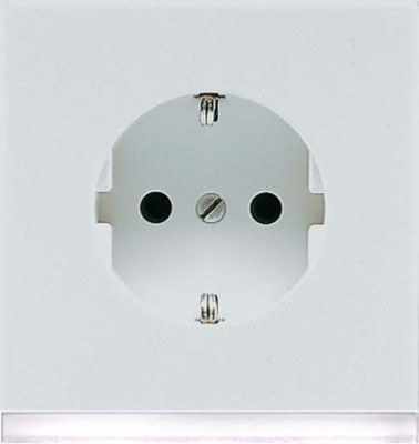 Jung SCHUKO-Steckdose lichtgrau 16A 250V weiß LEDLicht LS 520-O LG LEDW