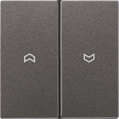 Jung Wippe Symbole anthrazit für Taster AL 2995 P AN