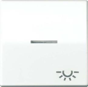 Jung Wippe Symbol LICHT alpinweiß für beleuchtb.Taster ABAS 591 KO5L WW