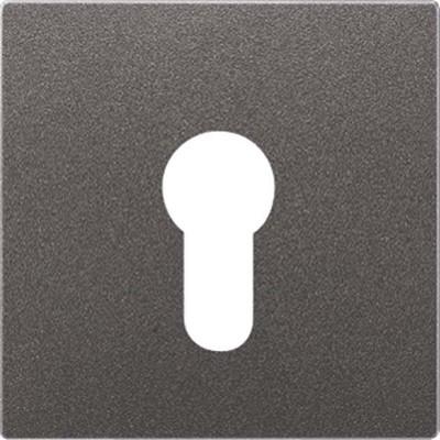 Jung Abdeckung anthrazit für Schlüsselschalt. AL 2925 AN