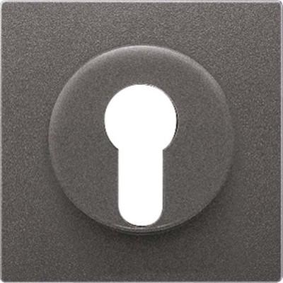 Jung Abdeckung anthrazit für Schlüsselschalt. AL 2928 AN