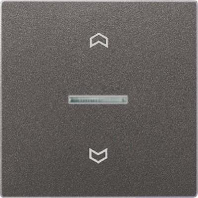 Jung Wippe Symbole/Lichtl.anth für Taster AL 2990 KO5P AN