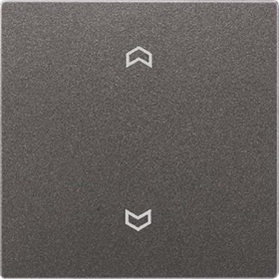 Jung Wippe Symbole anthrazit für Taster AL 2990 P AN