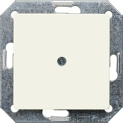 Siemens Indus.Sector Blindplatte 55x55 tws 5TG2558