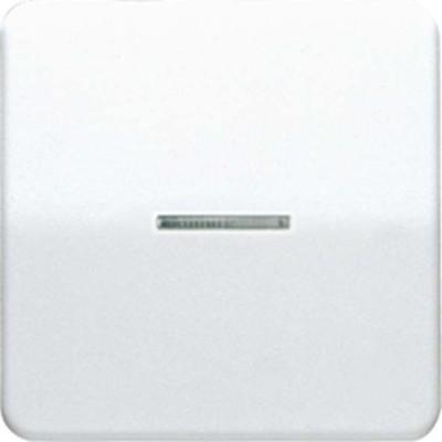 Jung Wippe Lichtleiter weiß für Taster CD 590 KO5