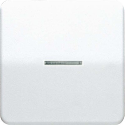 Jung Wippe Lichtleiter br für Taster CD 590 KO5 BR