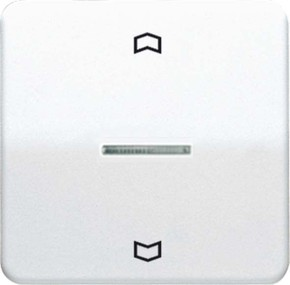 Jung Wippe Symbole/Lichtl.ws für Taster CD 590 KO5P