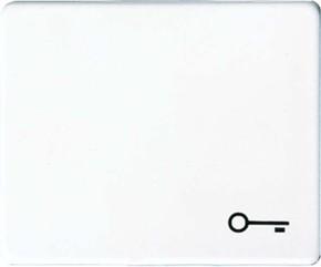 Jung Wippe Symbol TÜR alpinweiß für Taster SL 590 T WW