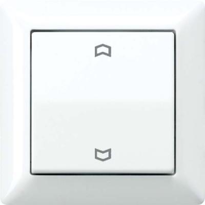 Jung Abdeckung Symbole alpinweiß für Taster AS 590 P WW