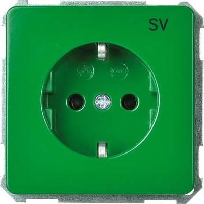 Elso UP-Steckdoseneinsatz SV grün 205117