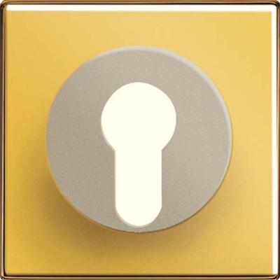 Jung Abdeckung go für Schlüsselschalt. GO 2928