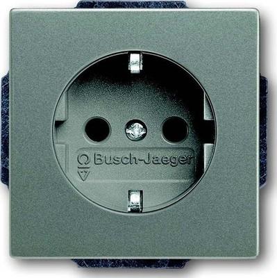 Busch-Jaeger SCHUKO(R) Steckdosen-Eins. meteor/graumetallic 20 EUC-803